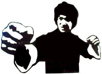 Car Sticker Decal 12x9 Bruce Lee Kung Fu Martial Art