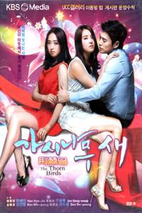 THE THORN BIRDS Korean Drama DVD Set