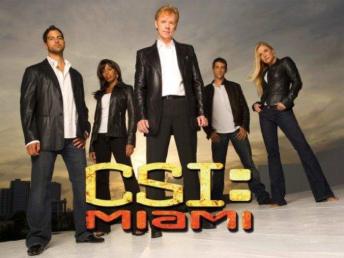 C.S.I.: Miami - The Ninth Season