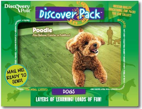 Dog Discover Pack, Poodle