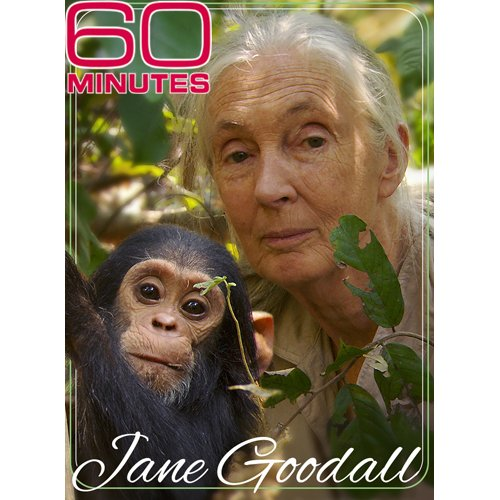 60 Minutes - Jane Goodall (October 24, 2010)