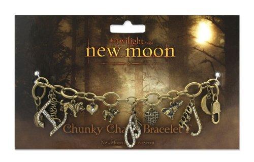 "Twilight New Moon ""3D Heart with bezel"" Chunky Charm"
