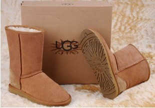 Wholesale UGGS 5819 5815 5825 women's UGG Snow boots