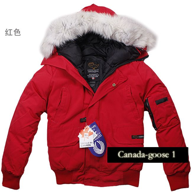 Canada Goose chilliwack parka Down Jackets